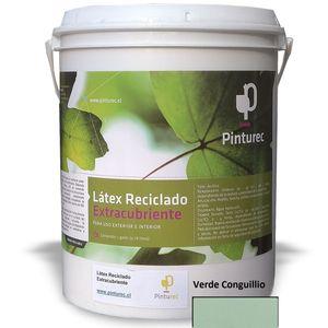 Látex Reciclado Extracubriente Verde Conguillío 1G